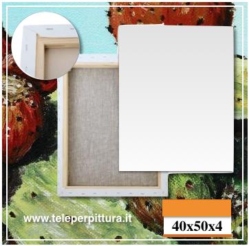 Tela Per Dipingere Catanzaro 40x50 spessore 4cm