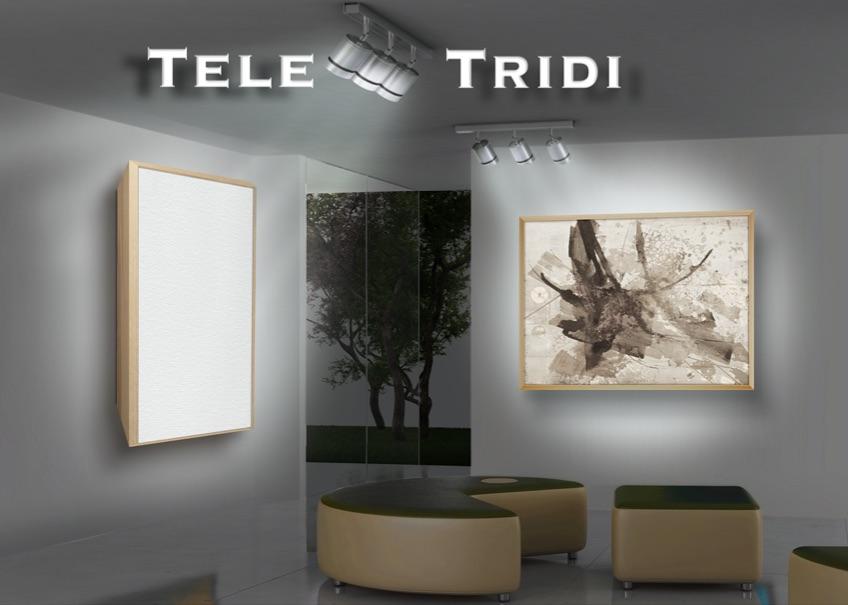 Tele Tridi con telaio a Cornice 50 x 70 belle arti